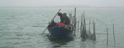 pesca tradizionale Laguna di Venezia